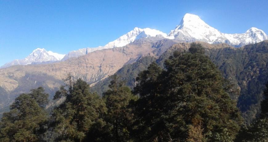 Mardi Himal Trek 2019/20