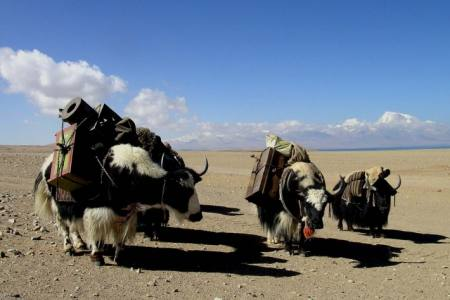Central Tibet Overland Tour